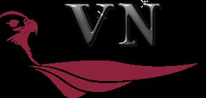 vn novo logo